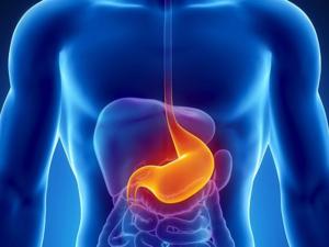 Gastroenterologista